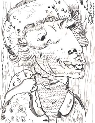 drawing_gerrymander_imbrica.jpg