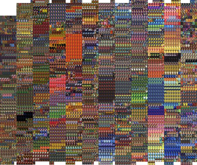 Shark_Roth-12-yrs-palettes.jpg